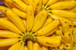 Bill Gates, Bananas e Biofortificados