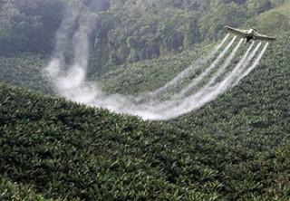 Posicionamento do INCA contra os agrotóxicos foi lançado no Rio